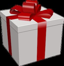 Dashcam als Weihnachtsgeschenk
