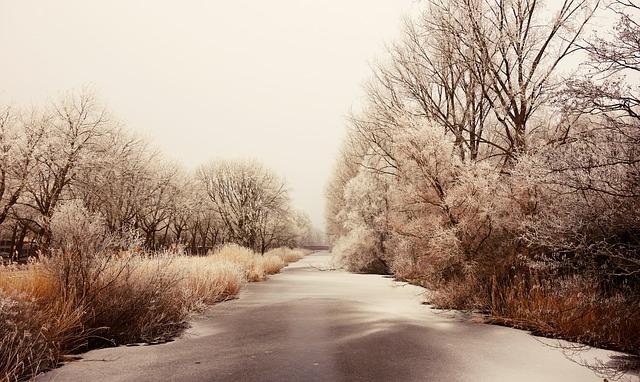 Dashcams im Winter